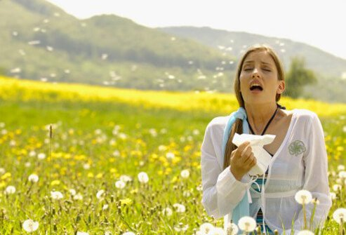 10 Common Allergy Causes