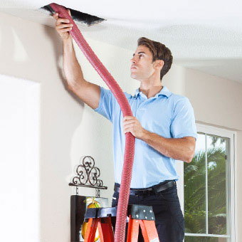 A Man On A Ladder Removes Mold From The Ceiling Vents