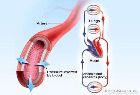 Blood Pressure Picture Image On