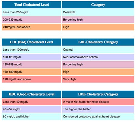 Chart of LDL and HDL Cholesterol Numbers