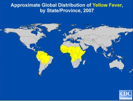 Picture of countries where yellow fever is present