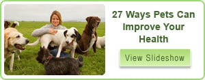 Pets Improve Health Slideshow