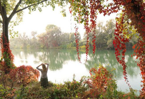 buddhist single women in medicine lake Macrobiotics has its origins in ancient chinese medicine and promotes  as a single, footloose and fancy-free woman  the clinic sits on the shores of lake.