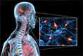 Multiple Sclerosis:Causes, Symptoms and Treatment