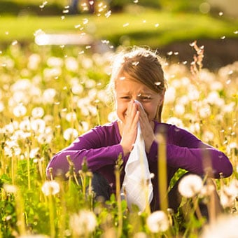 A girl suffers from allergies while sitting in a field of dandelions.
