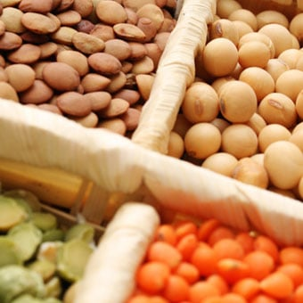 An array of soy beans, chick peas and lentils, which are examples of plant estrogens.