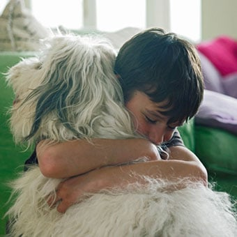 Dogs and cats can get scabies but are infected by a different type of mite not capable of spreading scabies to humans.