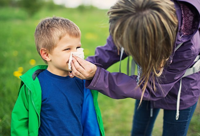 what causes nose allergies
