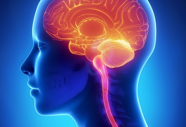 The medical term sclerosis refers to abnormal hardening of body tissue. In multiple sclerosis, there is a development of hard areas called