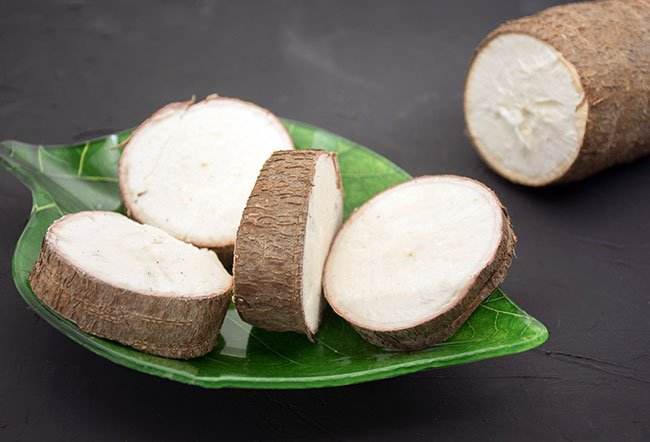Yucca is an edible, starchy plant from which cassava and tapioca are made. Yucca is edible.