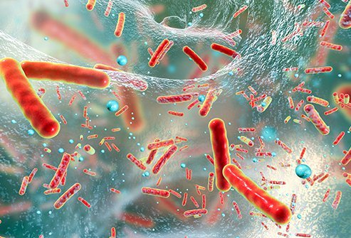 An individual may get rid of MRSA completely by following the prescription given by doctors