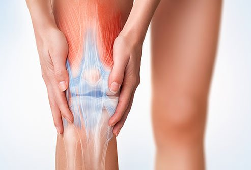 The knee is the joint that attaches the bones of the upper and lower legs.
