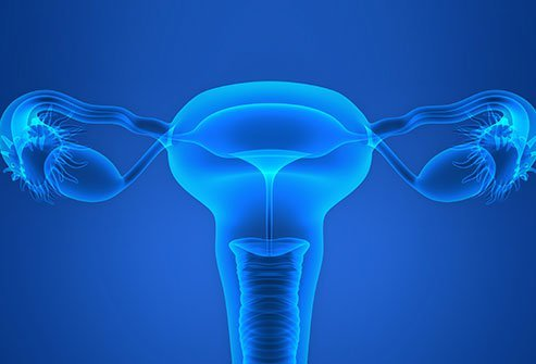 As per research, the cost of fallopian tube surgeries may start from a minimum of $3000 and may go up to $13,000 approximately.