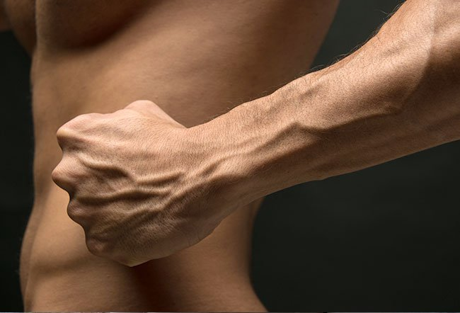 Your forearms are a part of the upper limb between the elbow and wrist.