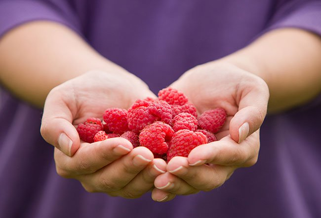A polyphenol-rich diet helps keep the heart, nerves, and blood vessels healthy.