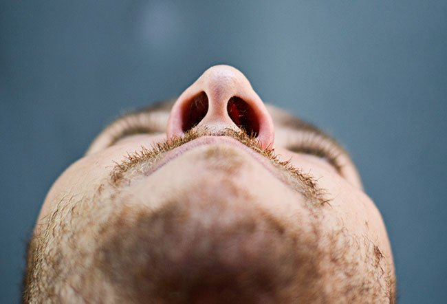 The nose is the most commonly injured structure in injuries involving the face.