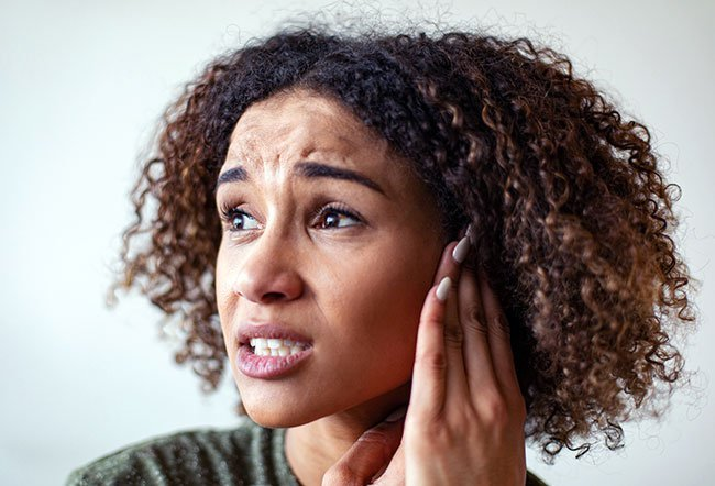 The outer ear canal is lined with many oil glands (sebaceous glands) and modified sweat glands.