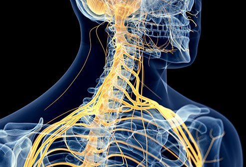 An infraclavicular nerve block is injected just below the collarbone to numb the brachial plexus, which provides nerve function to the arm.