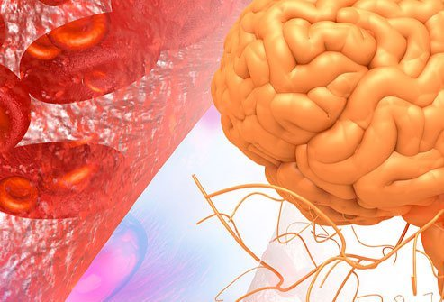 A high level of ammonia in the blood is a possible indication of metabolic encephalopathy.