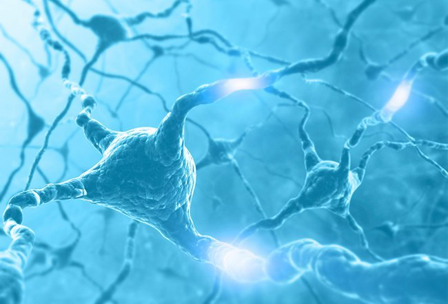 what are the 5 stages of Parkinson's disease
