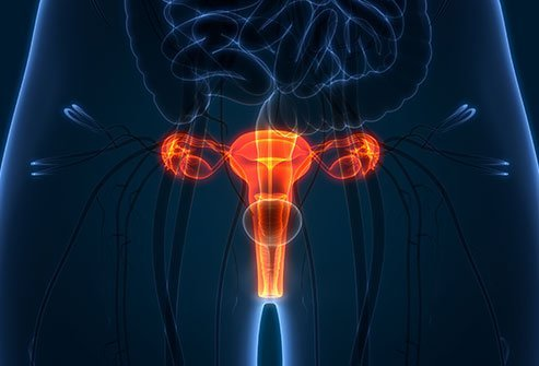 It is rare but possible to get pelvic inflammatory disease without having an STD.