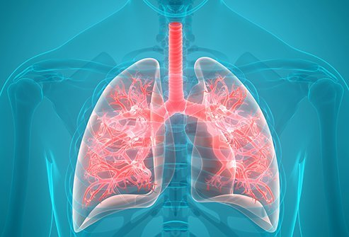 Pulmonologist in Delhi - Best Pulmonary Doctor - Top List - Book ...