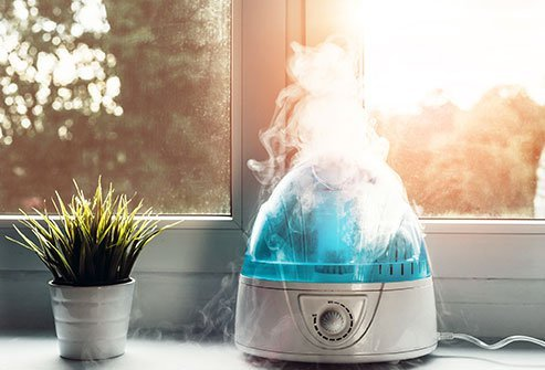 Humidifiers are a part of many households during the winter or flu season