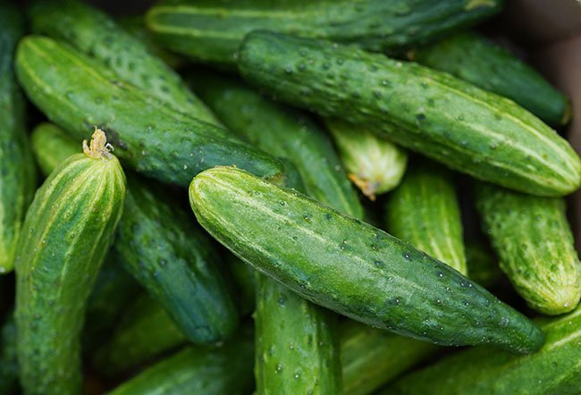 what are the benefits of eating cucumbers