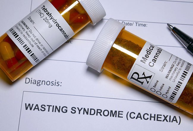 Cachexia or wasting syndrome involves a complex change in the body