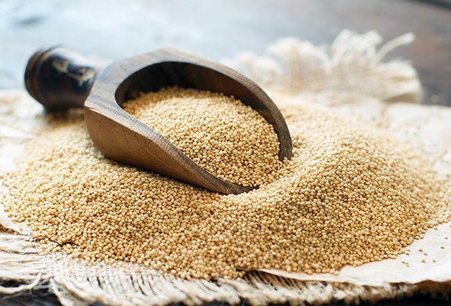 The seeds (grains) of the amaranth plant have been used for thousands of years