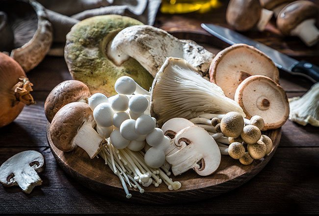 Often considered vegetables, mushrooms are neither plants nor animals. They belong to a unique kingdom of fungi. Some of the mushrooms considered best for human health include chaga, lion's mane, reishi, turkey tail, shiitake, cordyceps and maitake.
