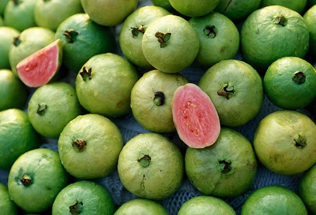 who should not eat guava
