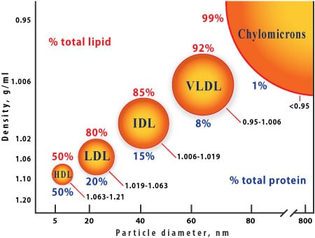 Picture of lipid sizes and densities.