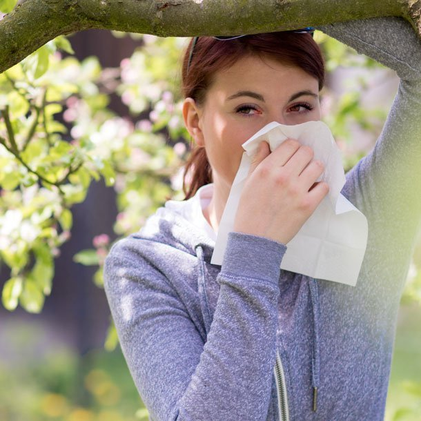 A consistent increase in the intensity and length of allergy season in regions of the United States signals a difficult season in 2020 for patients with allergic rhinitis, at the same time as the COVID-19 pandemic affects communities.