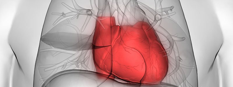 Chest Pain Quiz: Is It a Heart Attack? What Causes Chest Pain?