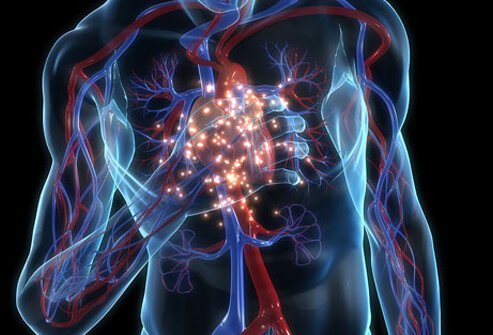 Warning signs of heart disease problems should not be ignored.