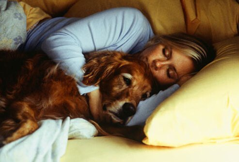 A woman sleeping and laying next to her dog