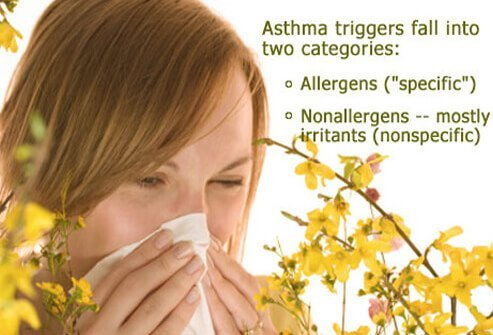 Triggers can be allergens or irritants.