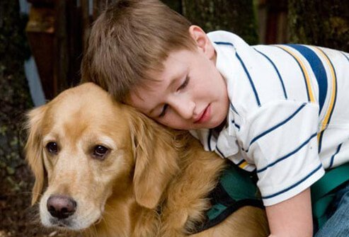 An autistic boy with a dog during behavioral therapy.