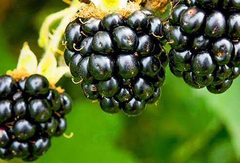 Blackberries have a lot of polyphenols, chemicals that may cut inflammation that leads to heart disease and cancer.