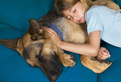 Photo of girl napping with dog.