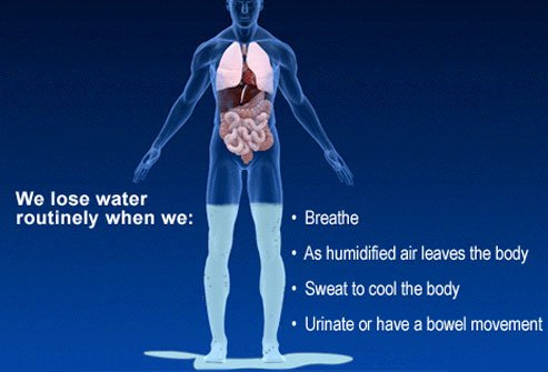 Dehydration can lead to serious consequences, including disorientation, coma, and death.