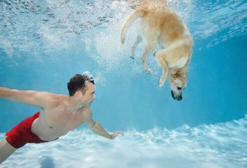 Man and dog underwater in a pool