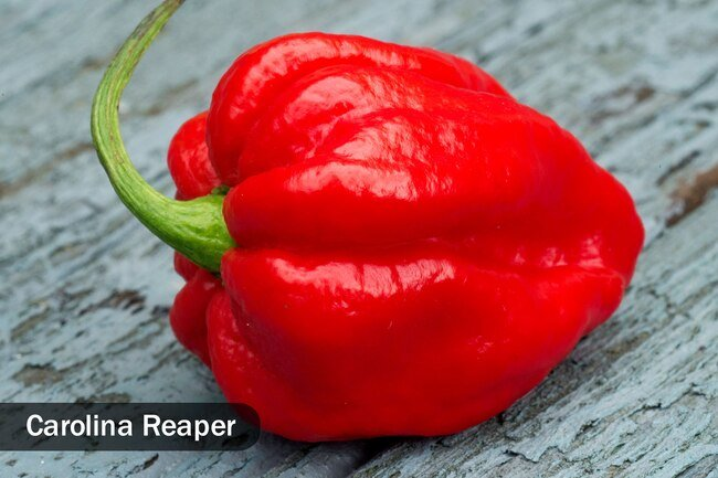 Hotness of peppers is measured by the Scoville heat scale.