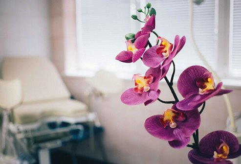 Taking a bouquet of flowers or potted foliage to a loved one in the hospital can be more than just a thoughtful gesture.