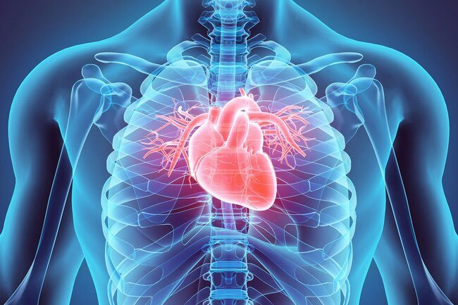 Air pollution may contribute to heart disease.
