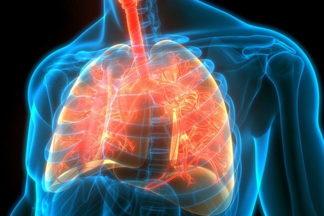If your immune system cannot subdue COVID-19 in the first week or so, the virus may move down into your lungs.