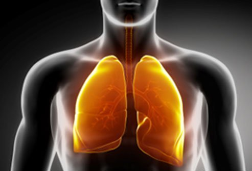 Shorter people tend to wait longer for lung transplants.