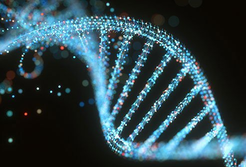 DNA is your body's recipe book, and a small tweak can have big impacts.