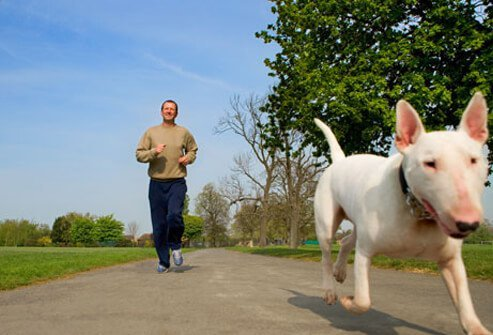 A man jogs with his dog.
